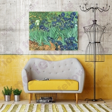 DIY Number Painting Irises Flowers Van Gogh Gift Canvas Paint By Numbers Flower Home Decor Coloring by