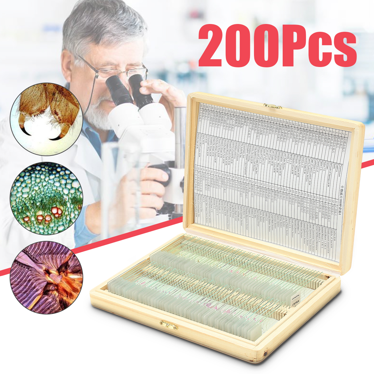 2xBoxes/Set Prepared Microscope Glass Slide Science Slides 100xPlant +100x Insects Tissues slides for Biological Education medicine science type blood test slides and marrow slides