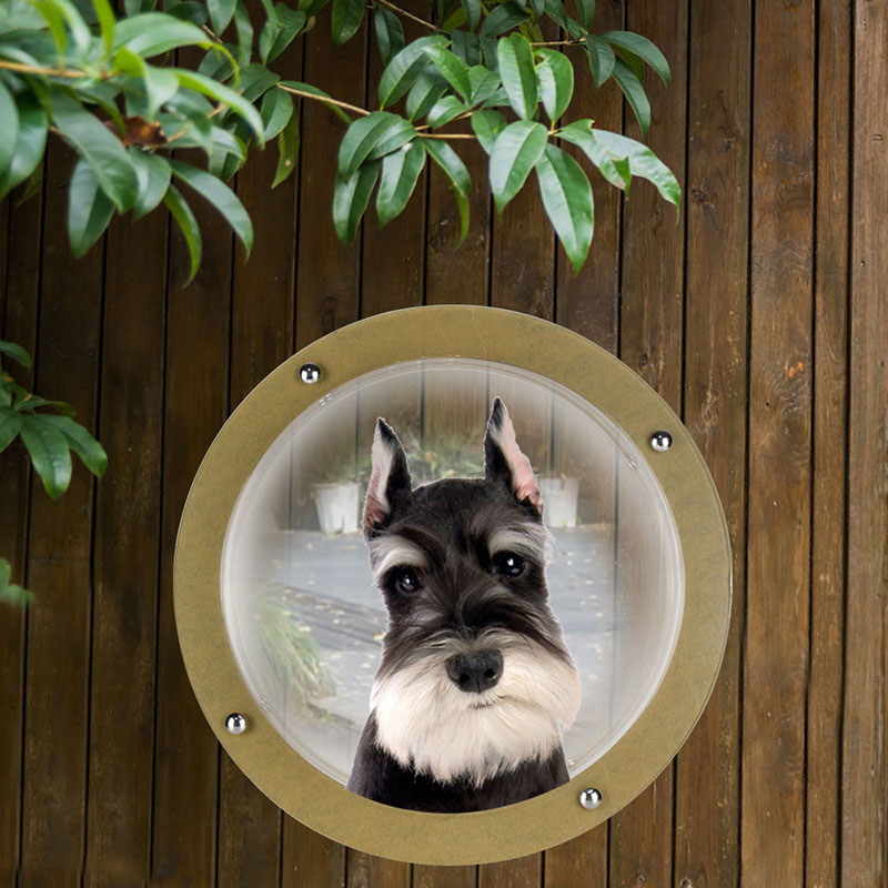 Acrylic Pet Dog Cat Door Space Window For Wall Security Flap Gate Pet  Tunnel Peephole Dog Fence Window For Home Treat Pet Autism In Dog Doors U0026  Ramps From ...