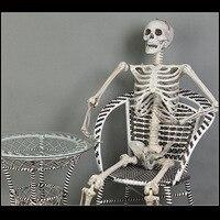 Plastic Skeleton Skeleton Haunted House Decoration Closet Escape Bar Halloween Props Imitation Human Skeleton