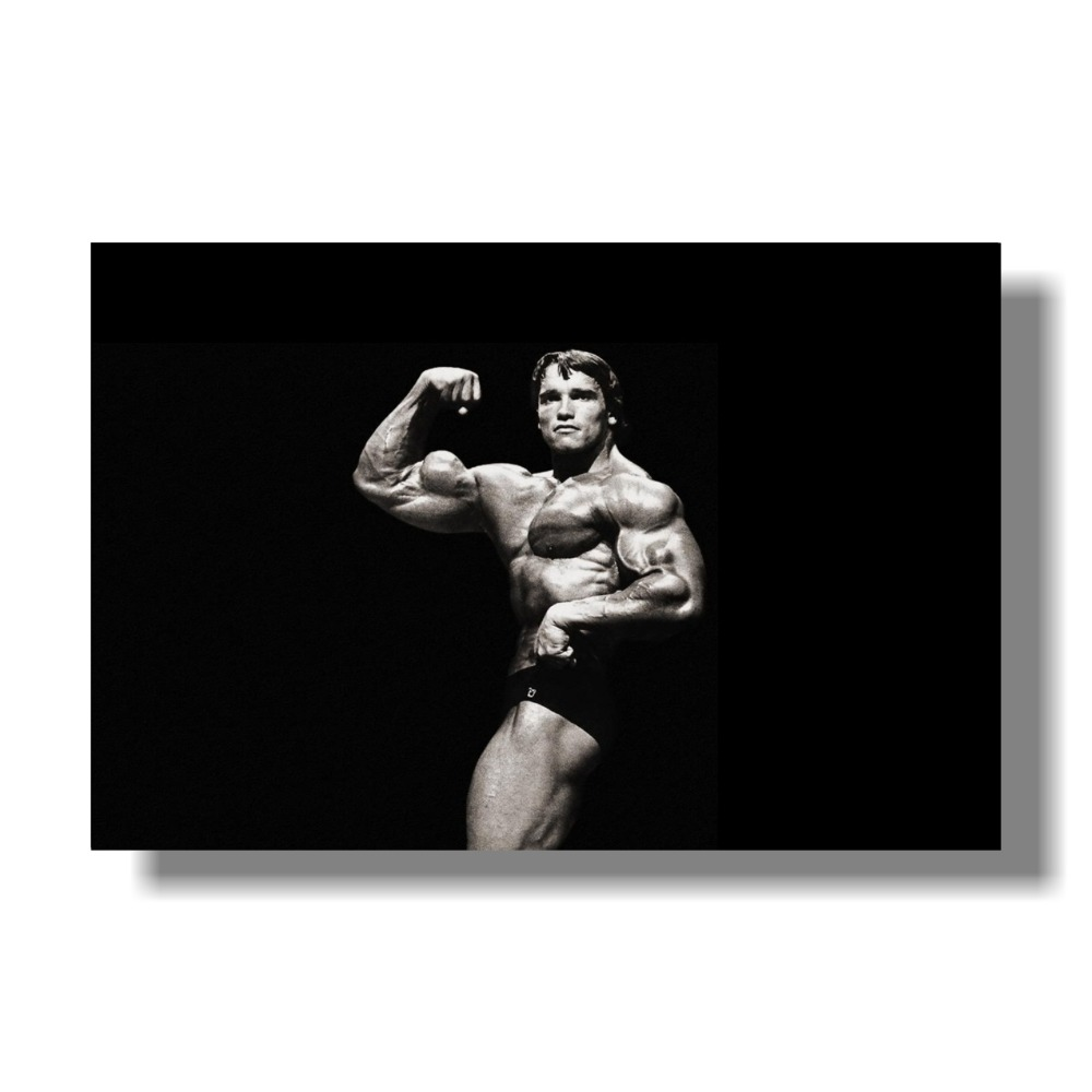 Z-358 Hot Arnold Schwarzenegger Rules for Success Quote Custom Poster Art Decor