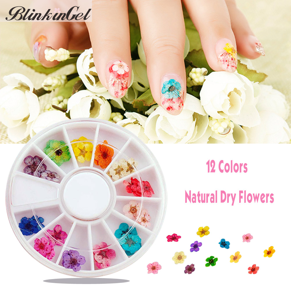 BlinkinGel New Nail Art Products Of 30pcs Dry Flower For