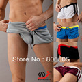 New Sexy Men's Casual Shorts Household Shorts runks Mesh fabric Shorts 5 Colors M L XL Size 7063