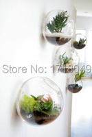 5PCS Lot Wall Glass Fish Tank Hydroponic Flowers Glass Vase Living Room Wall Decoration Home Decoration