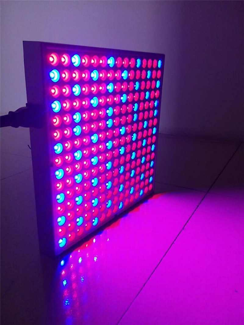 Red Blue LED Grow Light02