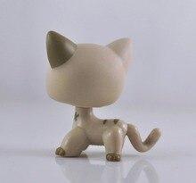 Mascota de pelo corto gato colección niño niña figura juguete más pequeño suelto LP07