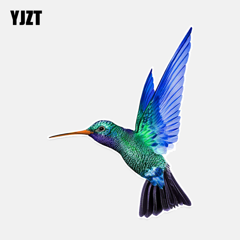 YJZT 11.9*15.7CM Coolest Bird Decor PVC Colored  Personalized Car Sticker 11A0190
