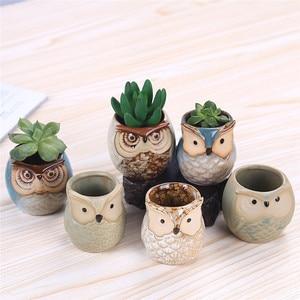 Image 1 - 6 Pcs 2.5 inch Ceramic Owl Succulent Planter Pot Succulent Container Cactus Plant Pot Mini Flower Pot With Holes