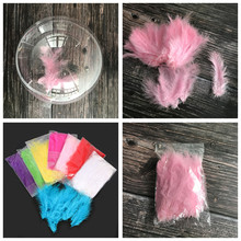 DIY Wedding Birthday Party Decoration Balloon Bobo Feather Confetti Transparent PVC Xenon