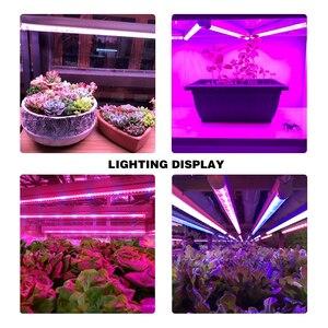 Image 5 - Fitolamp lâmpada led de crescimento espectro total, lâmpadas led de 5730, 50cm para plantas, para efeito hidroponia, sistema de lâmpadas phyto, tenda