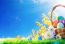 Laeacco Easter Basket Eggs Flowers Grassland Blue Sky Bokeh Baby Photography Background Customized Backdrops For Photo Studio стоимость