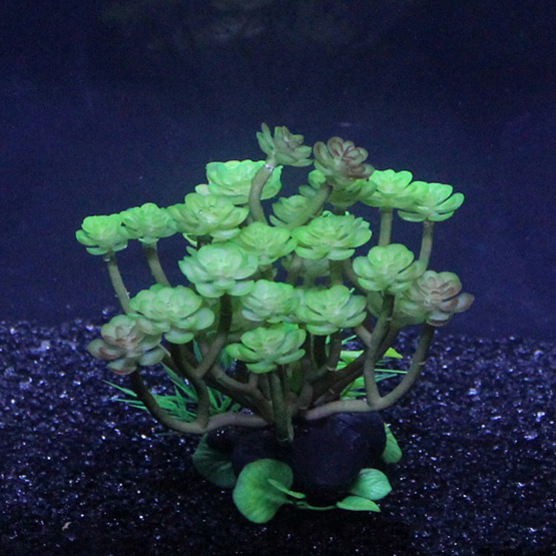 Compare prices on turtle aquarium plants online shopping for Aquatic decoration
