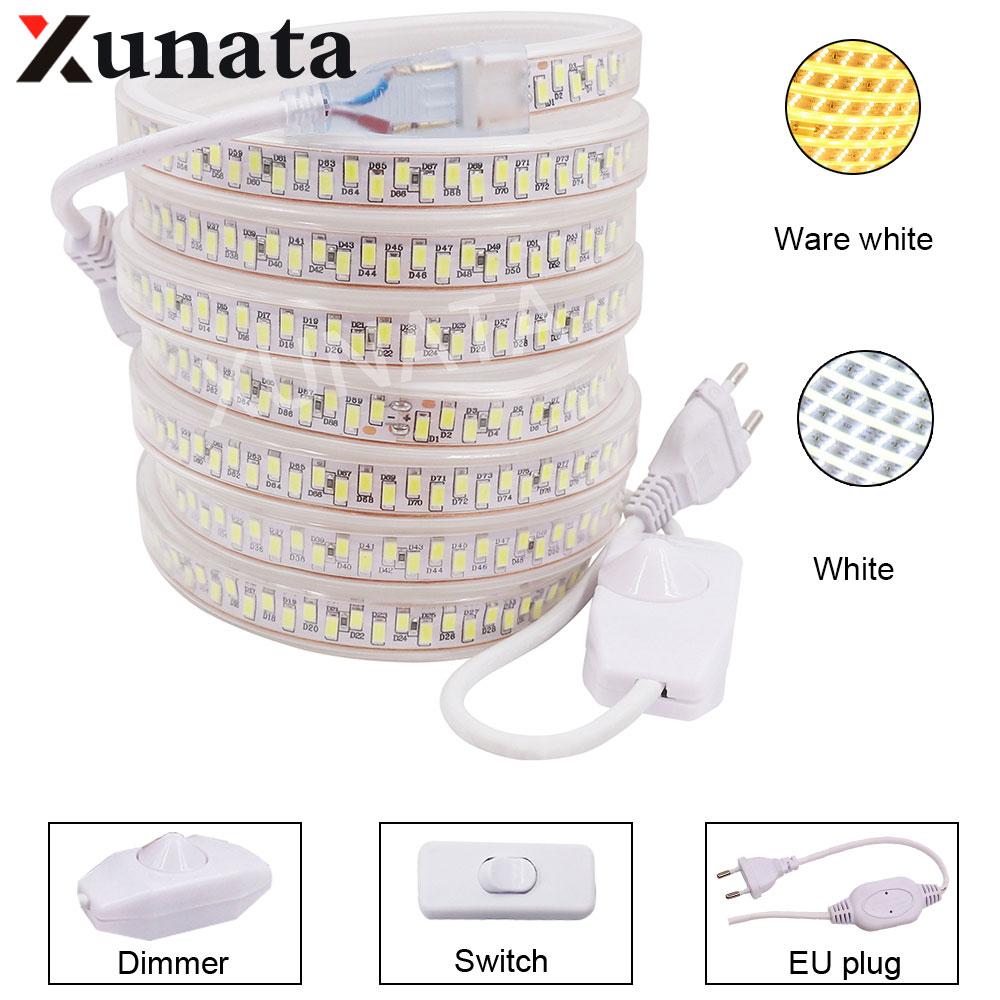 SMD 5730 AC220V LED Strip Flexible Light 180leds/m Waterproof Led Tape Light Dimmer Switch PLUG 1M/2M/3M/20M Under Cabinet Light