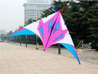 Free Shipping Outdoor Fun Sports 2.8m Power Triangle Kite Resin Rod Easy To Flying