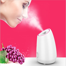 купить Facial Steamer DIY Fruit Steam Sprayer Beauty Machine Nano Ionic Mist Face Humidifier Sauna Facial Moisturizing Pore Cleansing дешево