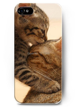 2016 Series Of Intimate Small Animal Kitten Eyes Charming Couple Play Nice Hard Case for iphone 4 4s 5 5s 5c 6 6S 6plus 6S PLUS