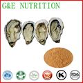 factory supply halal oyster extract 100g/lot