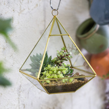 Golden Four-surfaced Diamond Glass Geometric Terrarium Succulent Fern Moss Plant Flower Pot Wall Gardening Decorative Planter