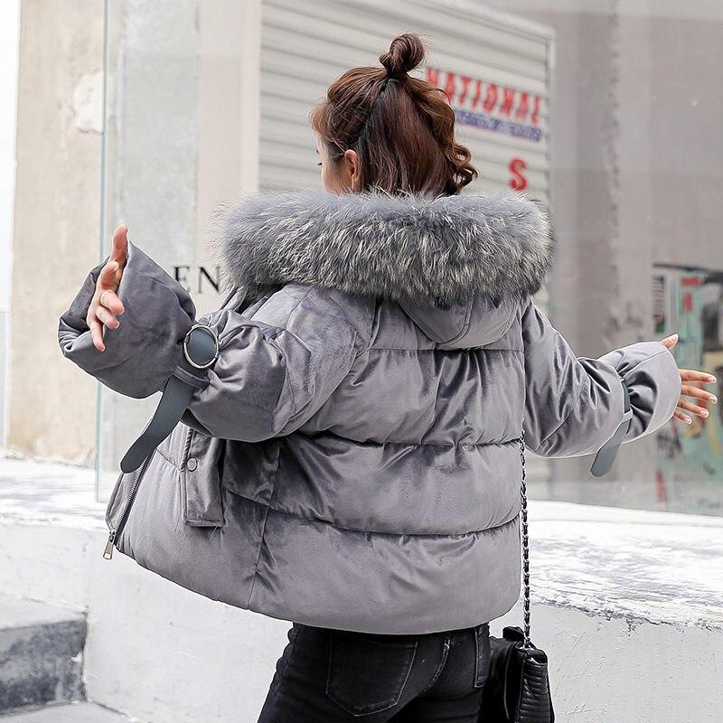Fourrure Or Court Outwear Beige Col Manteau Femmes Épais À Velours Femme rose Lâche Mz2936 De Veste Le gris noir Pain Bas Chaude Grand Vers Hiver Capuchon Coton oWrxBdeCQ