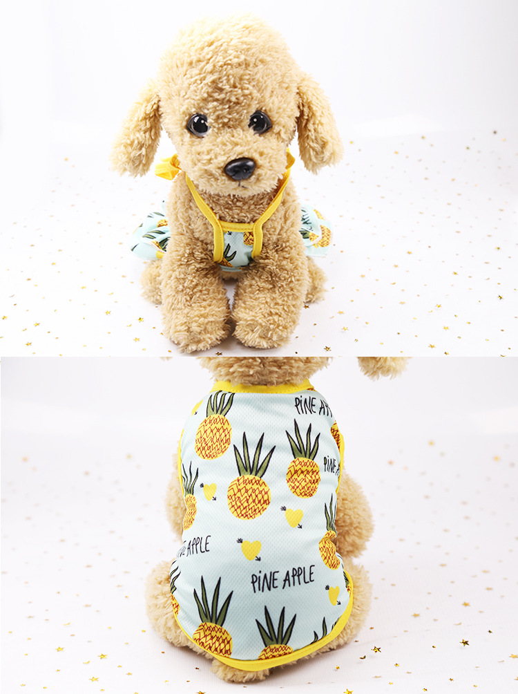 Fruit Print Little Dog Summer Dress (12)