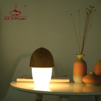 GX Diffuser Night Light Desk Lamp Led Lights for Home Children Study Battery Powered Porch Touch Transformers Dimmable Portable