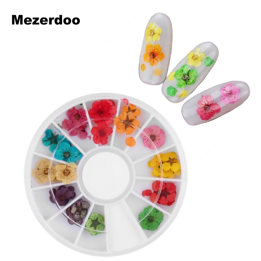 Aliexpress 12 Colors Real Nail Dried Flower Art Stickers Tips Decoration With Case Small Flowers Fashion Styling Tools Diy From Reliable