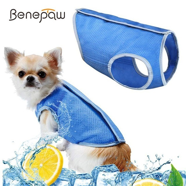 Benepaw Lightweight Cooling Dog Vest Back Hook And Loop Closure Nontoxic Pet Dog Clothes Summer Coat Jacket For Puppy Cat Kitten