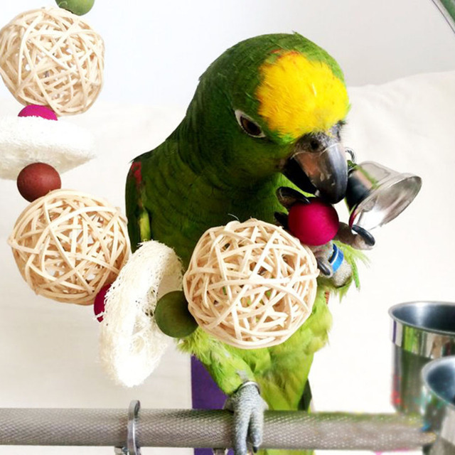 US $2.99 40% OFF Nieuwe aankomst vogelkooi speelgoed kick bal sneaker vogel speelgoed Papegaaienkooi Speelgoed Decoratieve Vogelkooien Papegaai