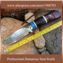 Camping knife damascus steel blade hunting knife fixed blade knife survival knife combat handmade military wood handle DT119