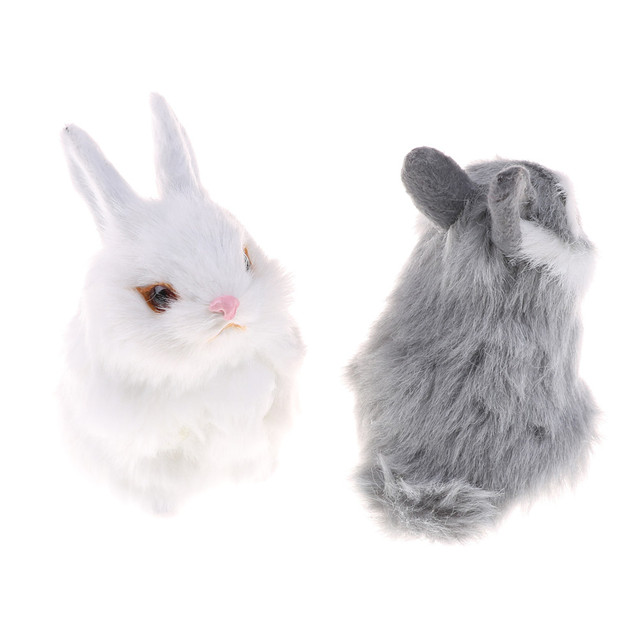 Rabbit Wonderland
