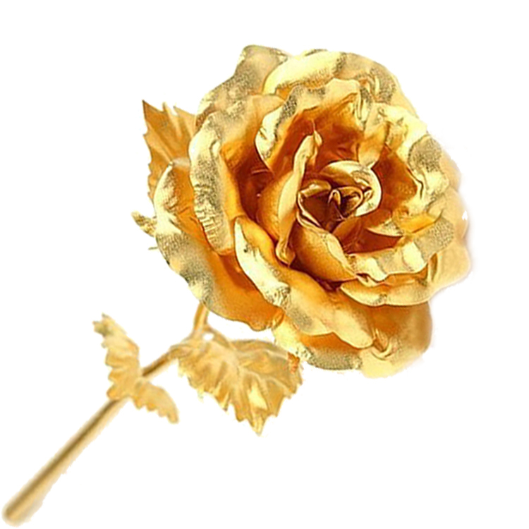 24k gold rose for day gift gifts to send girlfriend wife romantic birthday on. Black Bedroom Furniture Sets. Home Design Ideas