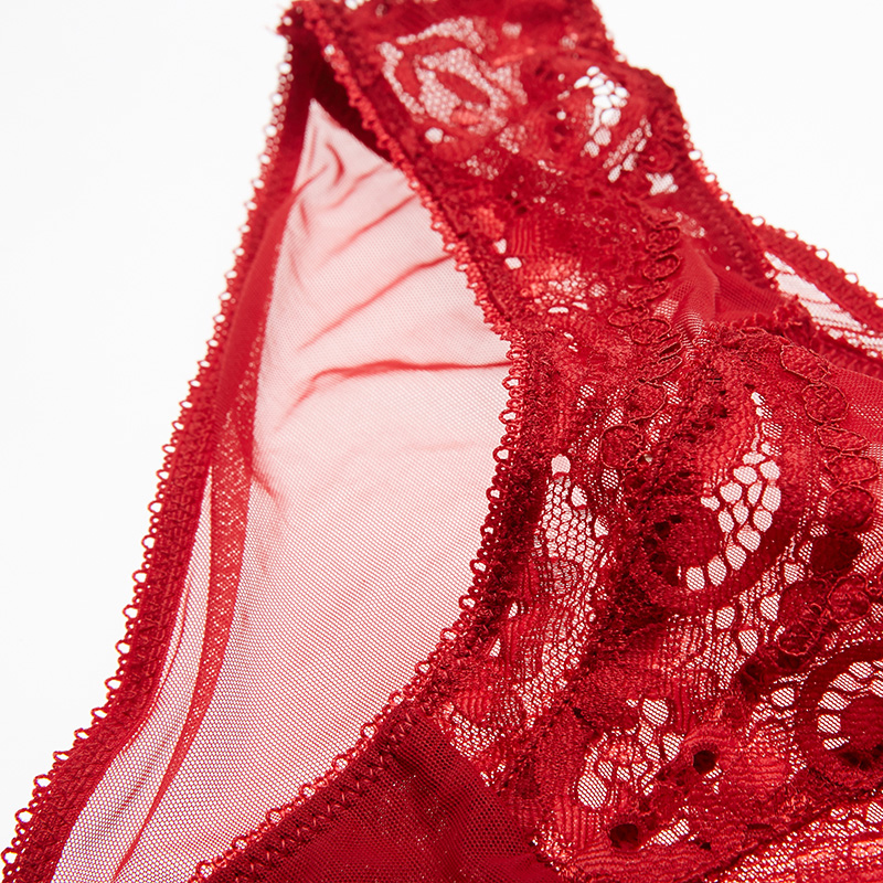 New Fashion hot low-rise sexy transparent panties women lace embroidery plus size XL briefs Red Hollow out Flowers Temptation