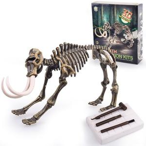 Image 3 - Jurassic Dinosaur Fossil excavation kits Education archeology Exquisite Toy Set Action Children Figure Education Gift BabyA9BC00