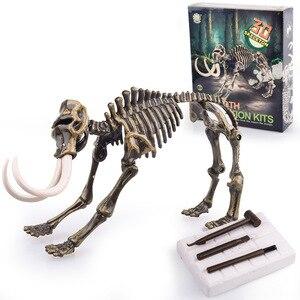 Image 3 - Kits de excavación de dinosaurios de Jurassic para niños, conjunto de juguete educativo de arqueología, regalo educativo, figura de acción, BabyA9BC00