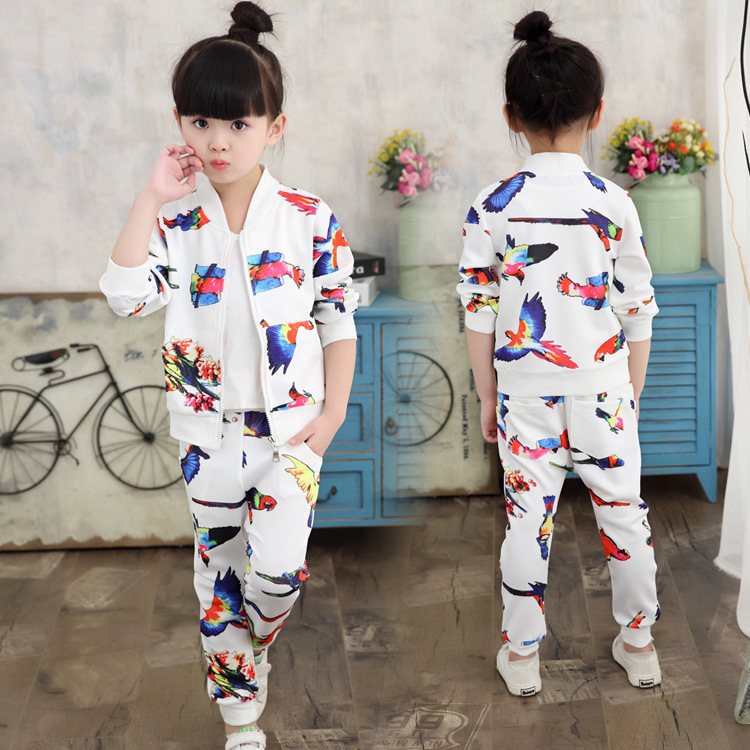 Pattern Spring Clothes Twinset Korean Children's Garment Girl Leisure Time Children Baby Spring Dress Clothes 2 Pieces Kids 2017 new pattern small children s garment baby twinset summer motion leisure time digital vest shorts basketball suit