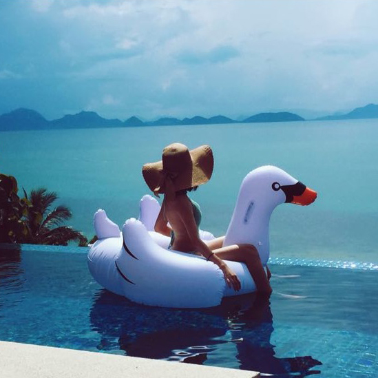 60 Inch 1 5m Giant Inflatable White Swan Pink Flamingo