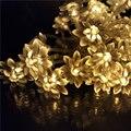 10 m 80 Leds LED de Lótus Corda Guirlandas Luzes IP44 LEVOU Corda Férias Casamento luz da Lanterna 110 V 220 V Luces Lotos UE EUA Power Supply