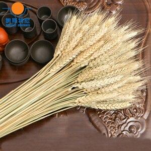 100 шт. Натуральные сушеные цветы, букеты из натурального сырого цвета, сухое ухо пшеничных букетов и пшеничных ушей