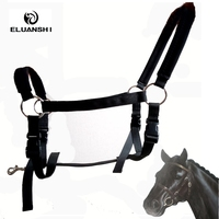 Textile Halter Horse Riding Horse Cage Sets Malone Winner Horses With Supplies And Equipment