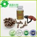 5 botellas de 300 cápsulas de polvo de extracto de hongo reishi duanwood espora de hierbas cura la diabetes cápsula