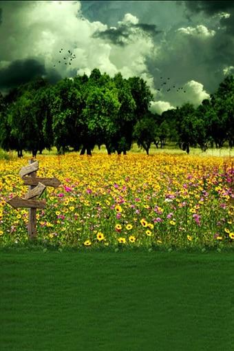 10ft x10ft vinyl spring green photography scenic backdrops,fond de studio de photographie,flower wedding studio photo background