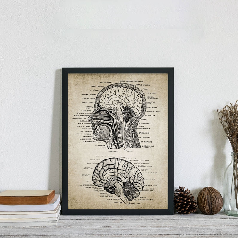 Vintage Human Head And Brain Anatomy Canvas Art Prints Poster Neuroscience Human Anatomy Painting Doctors Office Wall Art Decor