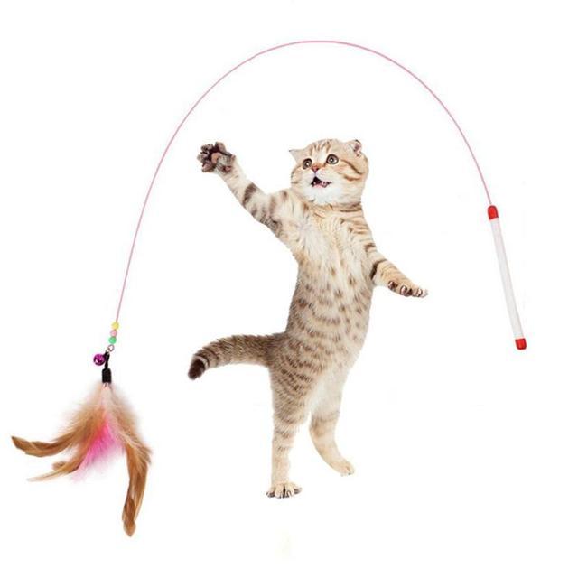 Divertente Giocattoli del Gatto Dell'animale Domestico Della Piuma Campana Asta