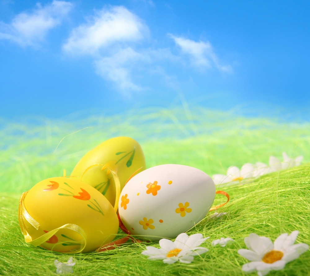 10x10ft Easter Theme Vinyl  Photography Backdrops Props Photography Studio  Background  FH-42 shengyongbao 300cm 200cm vinyl custom photography backdrops brick wall theme photo studio props photography background brw 12