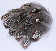 100Pcs/lot 4-8cm Pretty Nature Ringneck Pheasant Almond Plumage, loose feathers, bulk feathers,freeshipping