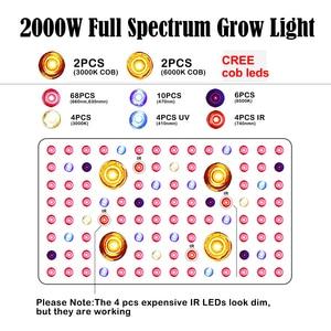 Image 2 - Phlizon 2000W Plant LED COB Full Spectrum Grow Light Lamp for Greenhouse Indoor Plants Vegetable Flower,cxb3590 Growing Lamp