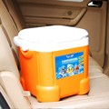 car Refrigerators mini cooler no battery pp+eps Insulation box enjoy cool warm drink 12L best gift for friend