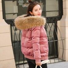 Хлопковое платье 2018 Для женщин зимний костюм новая Корейская версия свободные свободно шляпа, вниз Хлопковое платье, утолщенные короткие хлеб, бархатное пальто.