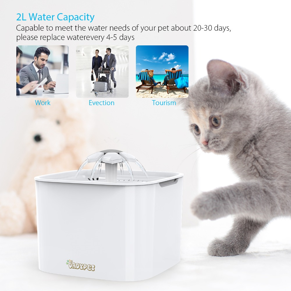 2l Automatic Pet Feeder For Cats And Dogs Guinea Pig Water Dispenser Electric Water Bowl With Filter 12v Pump Dog Water Fountain