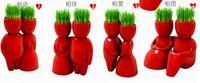 [Fly Eagle] 4 paio Rosso amante Desktop bonsai, mini vaso verde, FAI DA TE capelli uomo pianta, godono di piantatura, regalo per l'amante, 4 design diverso